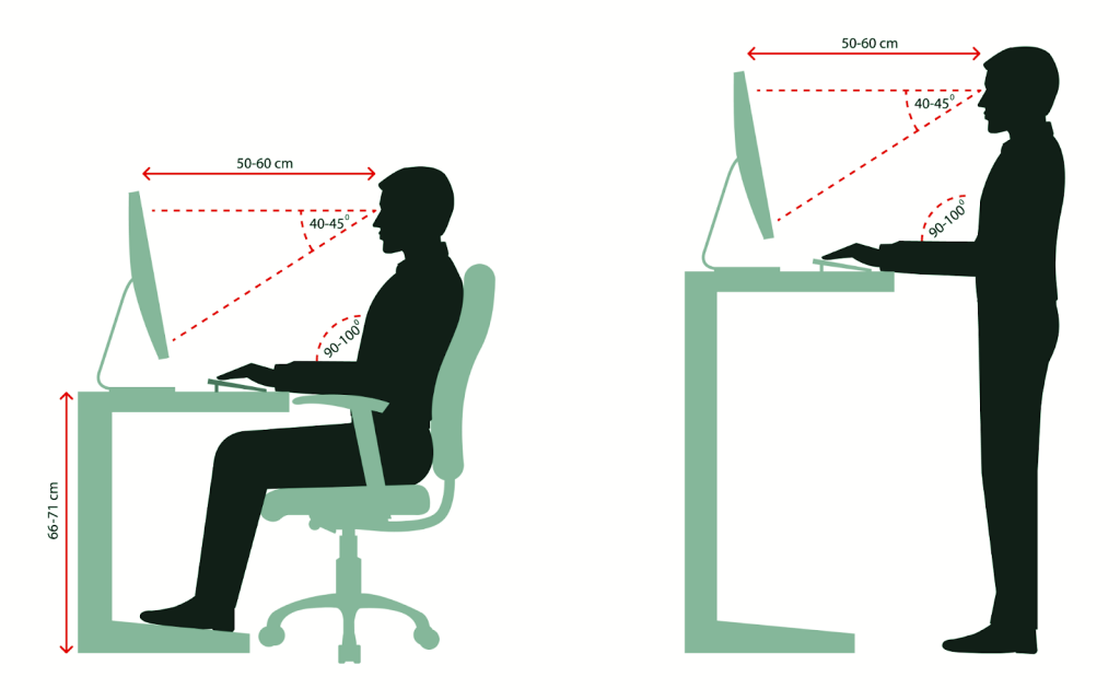 proper ergonomic posture shown for a seated desk position and a standing desk